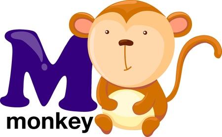 animal alphabet letter-m