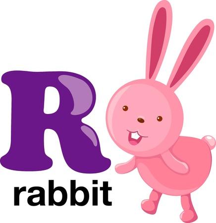 animal alphabet letter-r Stock Vector - 10197593