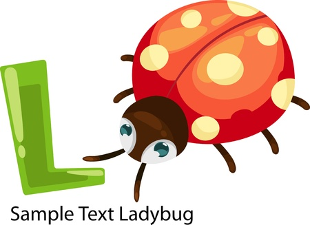 illustration isolated ALPHABET LETTER L-Ladybug  Vector