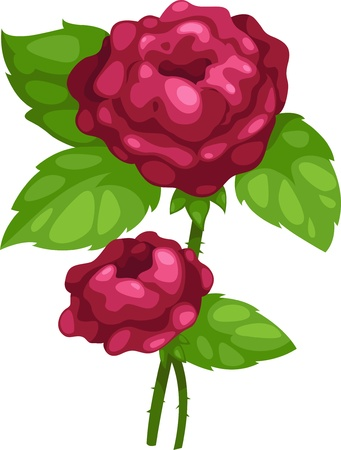 rose cute illustration vector Stock Vector - 12216510