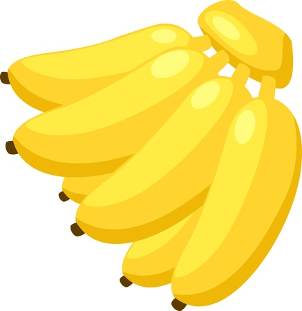illustration banana vector file on White background  Vector
