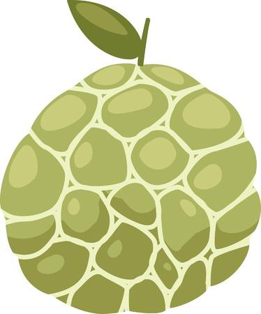 pastel de manzana: Flan de manzana ilustraci�n vectorial archivo en el fondo blanco Vectores