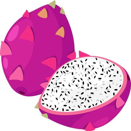 fruit du dragon: illustration de fruits fruit du dragon fichier vectoriel sur fond blanc