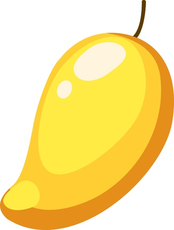 mango fruta: Ilustraci�n de frutas de mango de archivo vectorial sobre fondo blanco