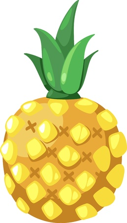 illustration pineapple vector  on White background  Stock Vector - 12216388