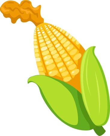 mango juice: illustration corn Illustration