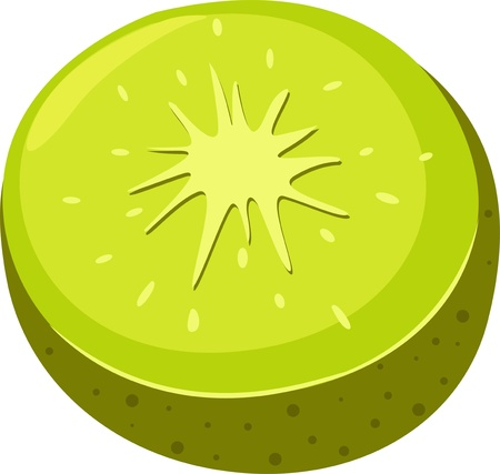 illustration Kiwi  Vector
