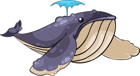 cartoon whale: illustration Whale Illustration
