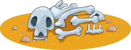 large skull: Illustration animal bones  Illustration