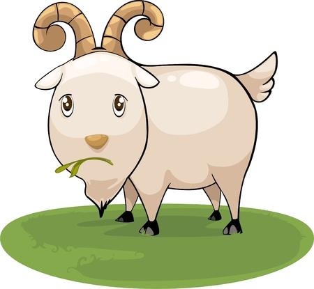 cabra: ilustración de dibujos animados de cabra de vectores Vectores