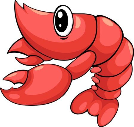 shellfish: illustration shrimp vector file