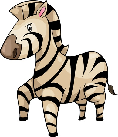 zebra face: illustration Zebra vector file