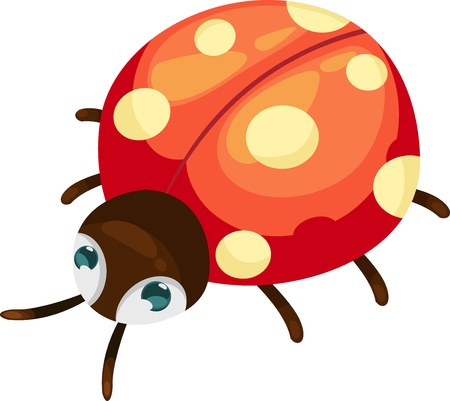 illustration isolated ALPHABET LETTER L-Ladybug  vector