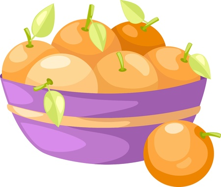 oranges in basket vector illustration  Vector