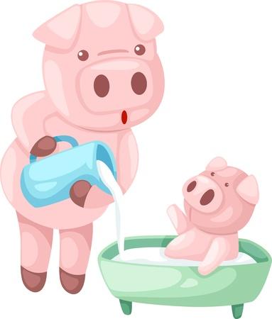 illustraiton: cerdo vector illustraiton Vectores