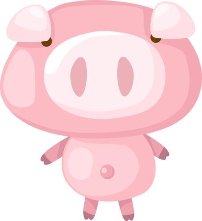 fat pigs: pig  Illustration
