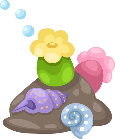 sea anemone: illustration coral and shells