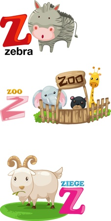 animal alphabet: Animal alphabet letter - Z  Illustration