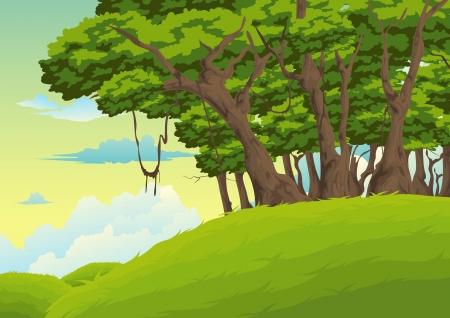 jungle foliage: Beautiful Landscape Background vector Illustration