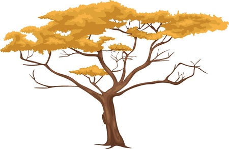 lonely tree: Tree vector Illustration