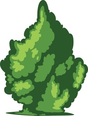 vine leaves: Tree vector Illustration