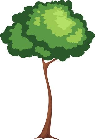 Tree vector Stock Vector - 16500441