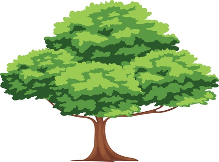 landscaped: Tree vector Illustration