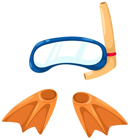 flippers: snorkeling equipment and flippers vector