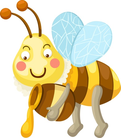 honeybee: illustration of isolated bee vector