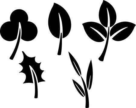 simple life: black  leaves  Vector illustration   on white background