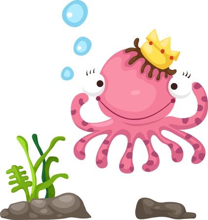 simple fish: illustration of octopus white background Illustration