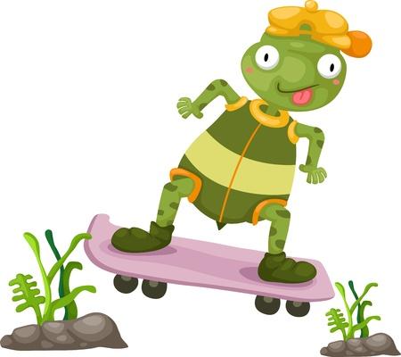 vertebrate: Illustration of turtles play skateboarding white background  Illustration