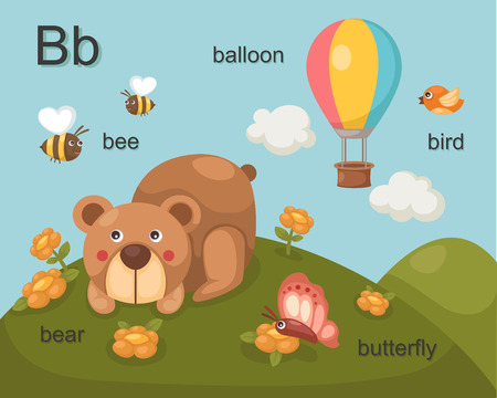 Alphabet B letter bee, bear, balloon, bird, butterfly   Vector