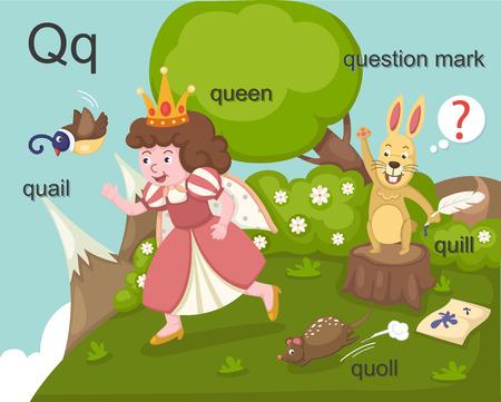 Alphabet Q letter quail, queen, quill, quoll, question mark  Vector