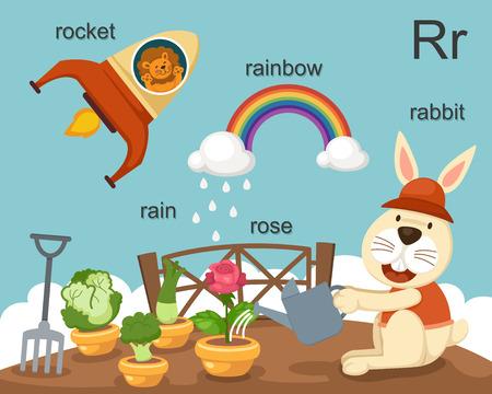Alphabet R letter rocket, rain, rose, rabbit, rainbow   Vector