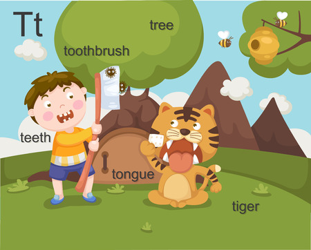 Alphabet T letter teeth, toothbrush, tree, tongue, tiger  Vector
