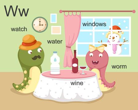 Alphabet W letter watch, water, wine, worm, windows  Vector
