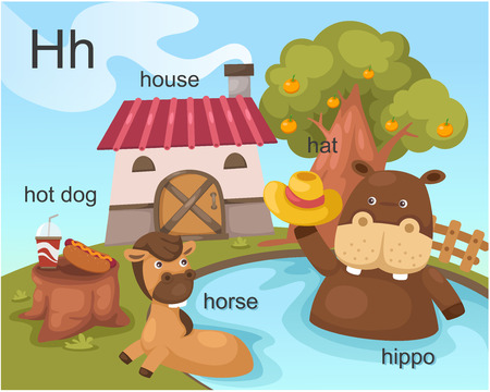 Alphabet H letter hot dog, house, hat ,horse, hippo  Vector