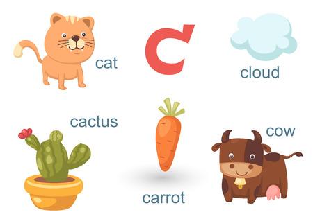 types of cactus: Alphabet C