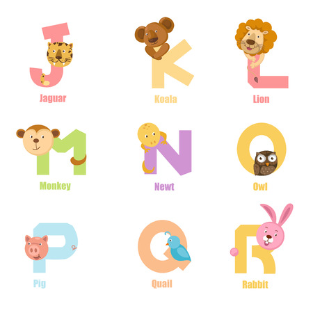 newt: Alphabet Animal J-R