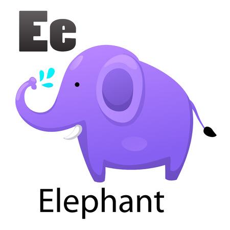 animal alphabet: Alphabet E with elephant