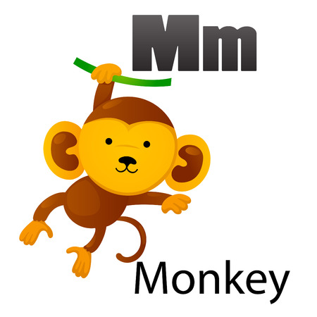 Alphabet M with Monkey Vector