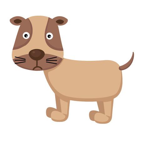 pooch: dog