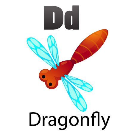 Alphabet D with Dragonfly Vector