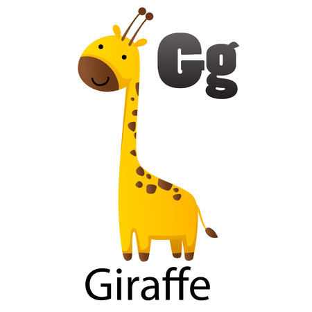g giraffe: Alphabet G with Giraffe