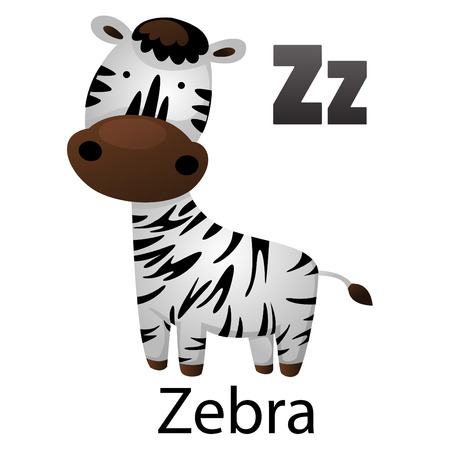 Alphabet Z with zebra Vector