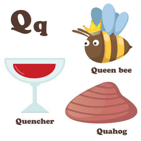 illustration of alphabet Q letter Quahog,Queen bee,Quencher