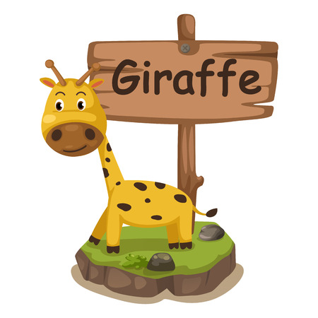 g giraffe: animal alphabet letter G for giraffe illustration vector Illustration