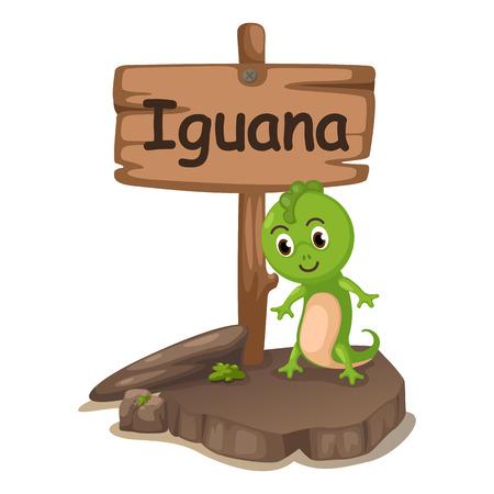 animal alphabet letter I for iguana illustration vector Vector