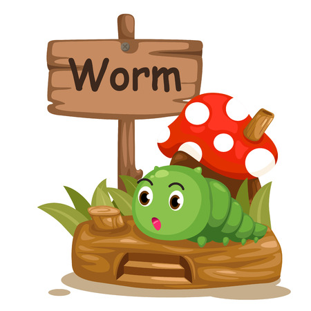 animal alphabet letter W for worm illustration vector Vector